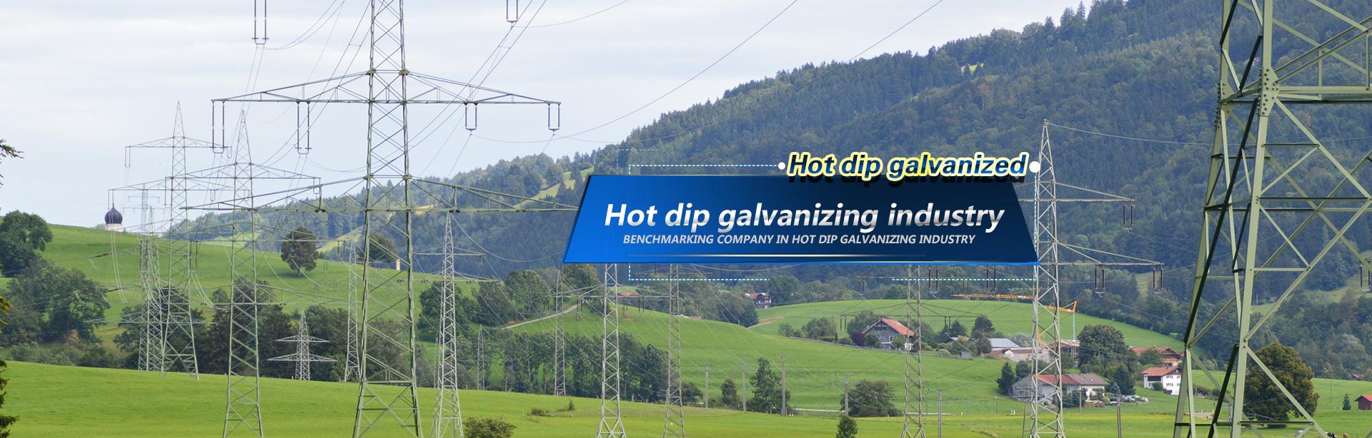 Hot-dip galvanizer